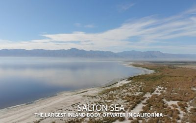 SALTON SEA HUNDREDS OF STUDIES, HUNDREDS OF MILLIONS